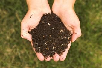 Van gft naar (gratis) compost voor de tuin